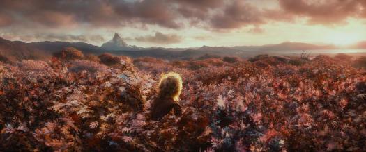 tree-hobbit