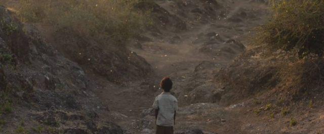 lion-trailer-screen2