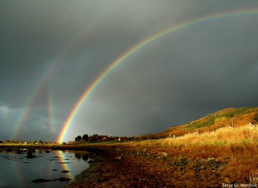 rainbows_nordvik_large